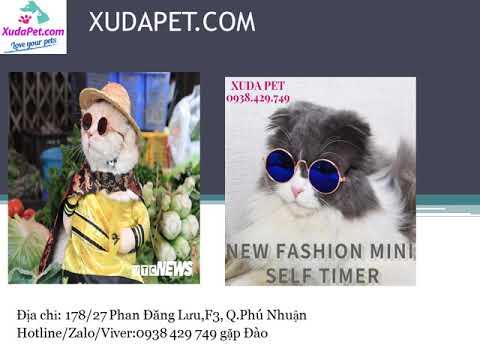 shop đồ cho thú cưng – đồ cho chó – đồ cho mèo – xudapet.com