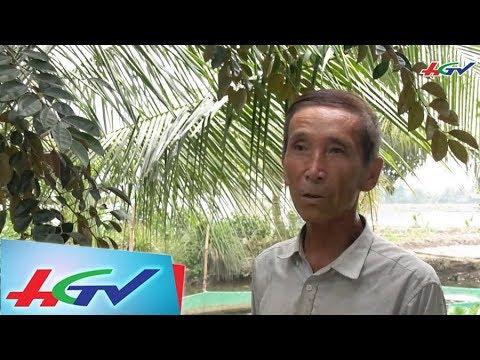 Lão nông sống nhàn nhờ nuôi lươn bán giống