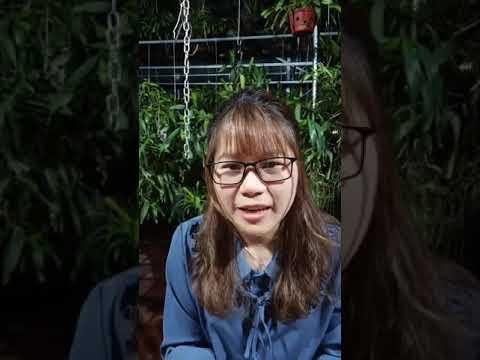 Hoa cây cảnh giá rẻ kịch sàn và phương pháp chăm sóc tháng 5 ngày  2