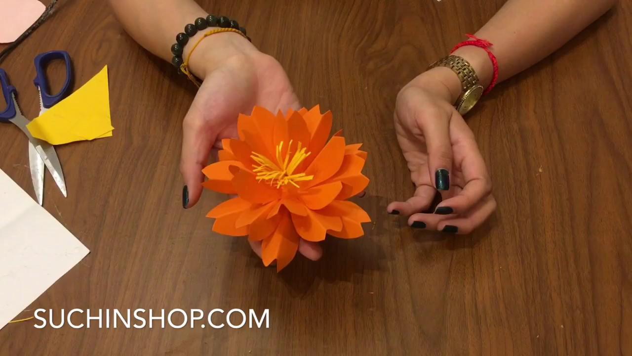 Hướng dẫn làm hoa Sakura gắn backdrop hoa giấy – Hoa Giấy SUCHIN – VIDEO SỐ 42