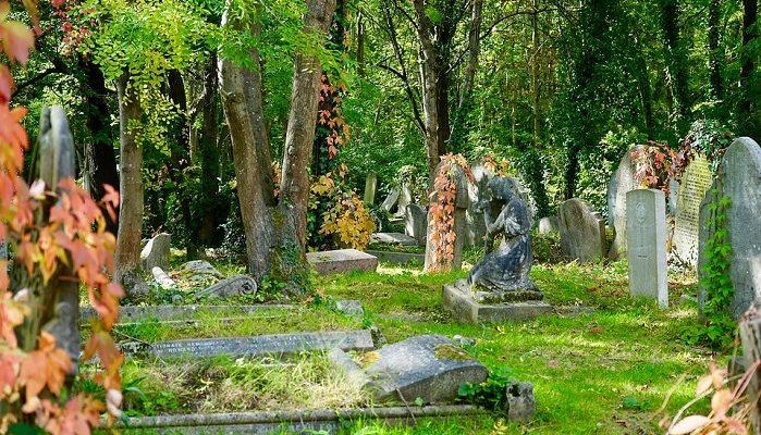 Đám tang liên quan đến con đề gì?