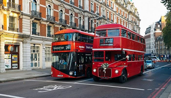 Mơ thấy xe bus nên đánh con gì chắc chắn ăn tiền?